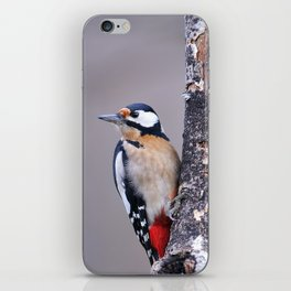 Two great spotted woodpecker perched. iPhone Skin