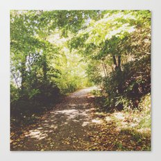 so is the tree inclined Canvas Print