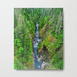 Natural Drift Metal Print