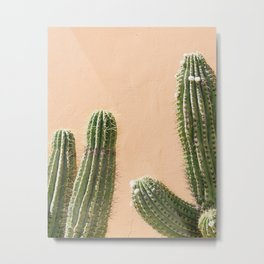 Desert Dream Metal Print