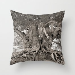 1000 years old chestnut tree Throw Pillow