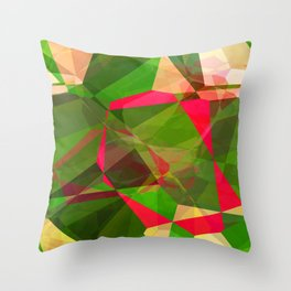 Pink Roses in Anzures 5  Abstract Polygons 2 Throw Pillow