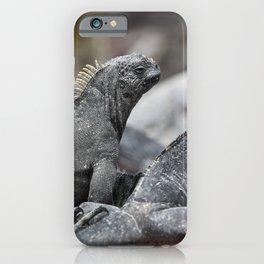 Three marine iguanas hanging out together iPhone Case