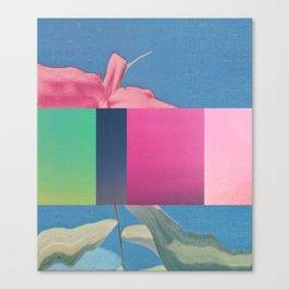 Untitled 20151118f (Arrangement) Canvas Print