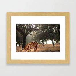 Dehesa / Montado Framed Art Print