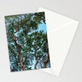 monkey pod tree Stationery Cards