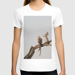 Hawk Eagle with its Catch T-shirt