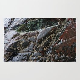 Ocean Weathered Natural Rock Texture with Barnacles Rug