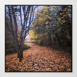 A Walk Through the Woods in Autumn Canvas Print