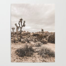 Joshua Tree National Park Landscape Poster