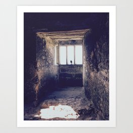 A crow in Blarney Castle Art Print