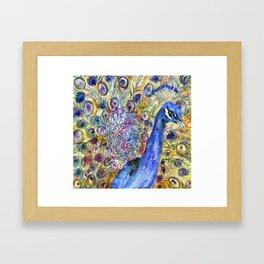 Amethyst Peacock Framed Art Print