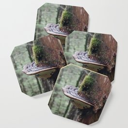 Magical Fungi World   Nature Photography Coaster
