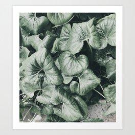 Green Lush Dreams Art Print