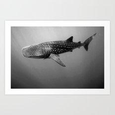 Big Fish, B & W Art Print