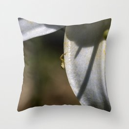 Tiny spider on lily flower Throw Pillow