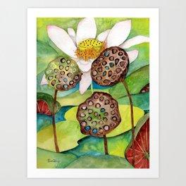 Lotus flower lily pads Art Print