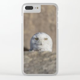 Peekaboo Snowy Owl Clear iPhone Case