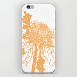Australian native flower sketch - Waratah iPhone Skin