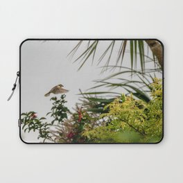 Flying Sparrow Bird female caught in motion flying Laptop Sleeve