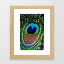 Iridescent Eye Framed Art Print