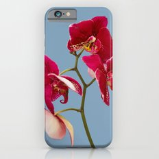ORCHID iPhone 6s Slim Case