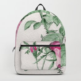 Rosa Centifolia Foliacea Backpack