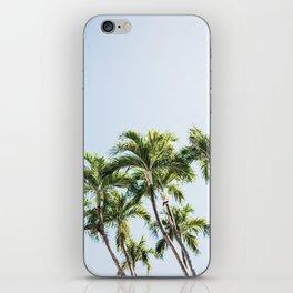 Palm Trees V3 iPhone Skin