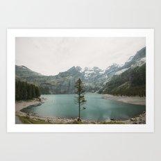 Lone Switzerland Tree - Landscape Photography Art Print