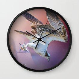 Feeding Osprey Wall Clock