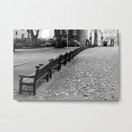 Park lines Metal Print