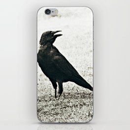 Crow Caw iPhone Skin