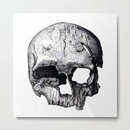 Skull 8 Metal Print