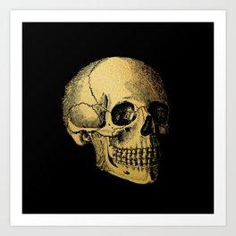 The Anatomy of Shadows Art Print
