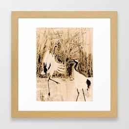Dancing Cranes Framed Art Print