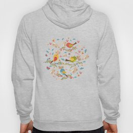 Special Springtime Delivery From Little Birds Pattern Hoody
