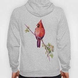 Cardinal Bird Vintage Style Red Cardinal design Hoody