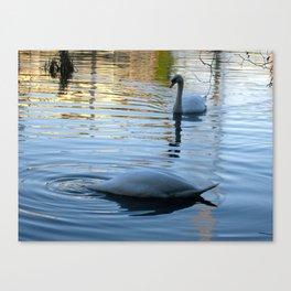 """""""DUCK"""" said the swan! Canvas Print"""