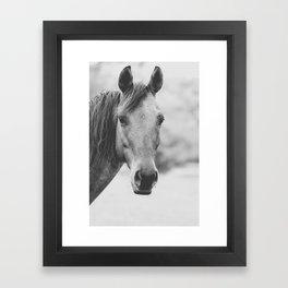 Wild Heart, No. 4 Framed Art Print