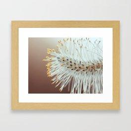 Catkin Framed Art Print