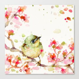 Mr Fluffy Pants (bird) Canvas Print