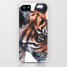 Sumatran Tiger Cub iPhone Case