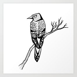 Bird on Branch Art Print