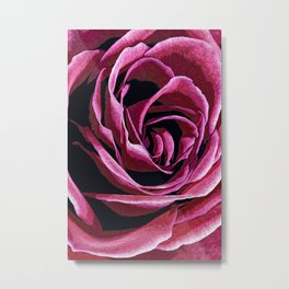 Rose Sketch Metal Print
