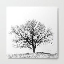 Black and White tree Metal Print