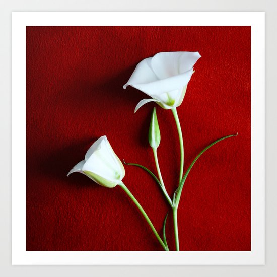 Lilies and Love Art Print
