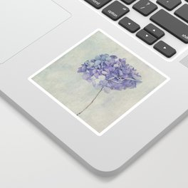 Beautiful Blue Hydrangea Sticker