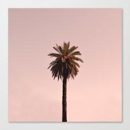 Pastel vibes 57 Canvas Print