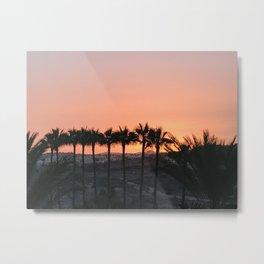 Palmtree sunset Metal Print