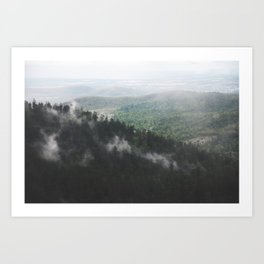 Clouds in the forest Art Print